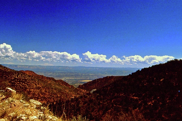 Arizona Photograph - Desert Vista by Gary Wonning