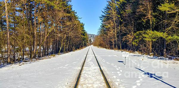 Landscape Photograph - Devils Lake Railroad by Ricky L Jones