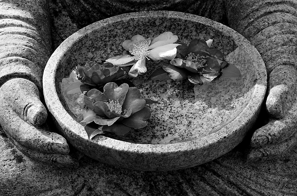 Buddha Photograph - Devotional Black-and-white Version by Dean Harte