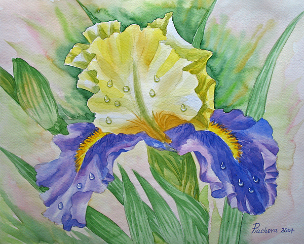 Flowers Painting - Dew Drops Upon Iris.2007 by Natalia Piacheva
