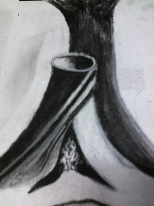 Charcoal Drawing - Differant by Shawn Fazenbaker