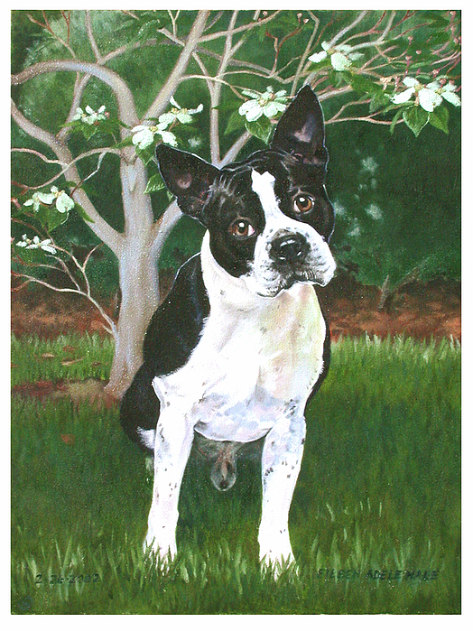 Portrait Painting - Ditto by Eileen Hale