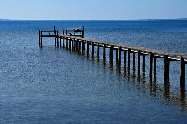 Dock Photograph - Dock Fisherman by Lyle  Huisken