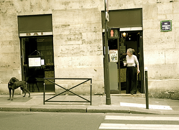 Paris Photograph - Dog And Owner by Louise Fahy