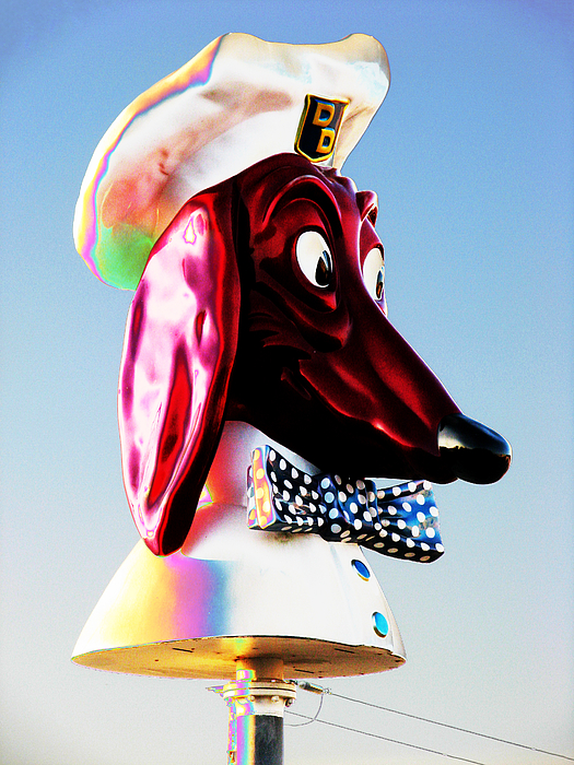 Doggie Photograph - Doggie Diner Sign by Samuel Sheats