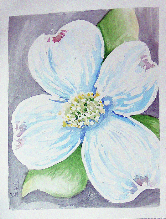 Dogwood Bloom Painting by Loretta Nash