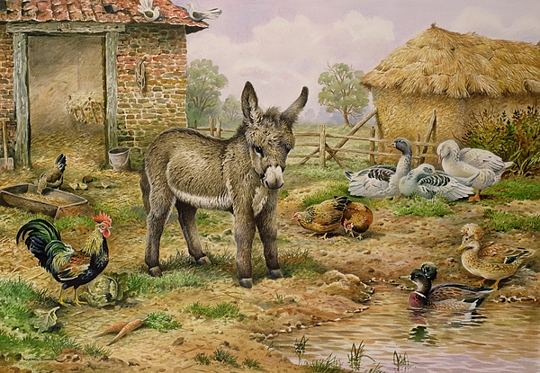 Farmyard Painting - Donkey And Farmyard Fowl  by Carl Donner