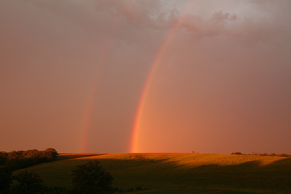Color Photograph - Dual Rainbows by Linda Ostby