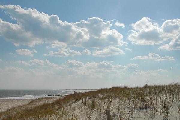 Ocean Dunes Photograph - Dunes 32 by Joyce StJames