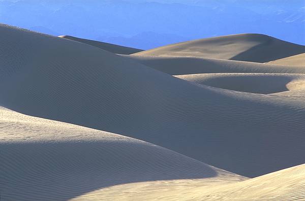 Dunes And Blue Mountains Photograph by John Farley