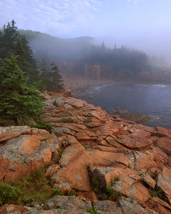Acadia Photograph - Early Morning Fog  by Stephen  Vecchiotti