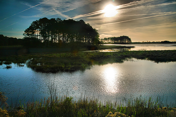 Marsh Photograph - Early Morning On Beach Drive II by Steven Ainsworth