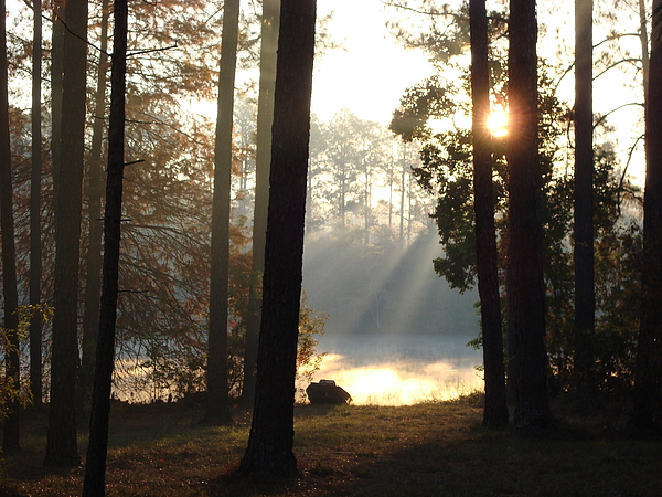 Sun Photograph - Early Morning Sun Rays On The Lake by Cindy Hudson