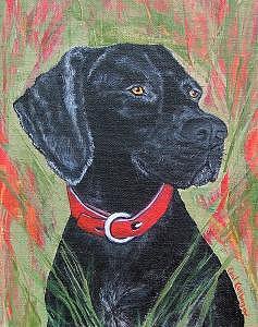Dog Painting - Early Riser   by Carol Kullberg