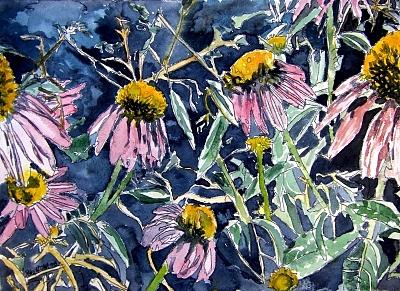 Echinacea Painting - Echinacea Cone Flower Art by Derek Mccrea