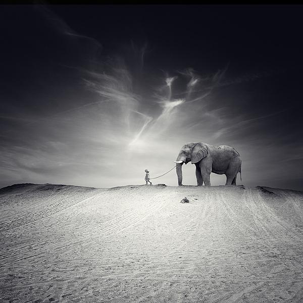 El Gran Viaje Photograph by Luis  Beltran