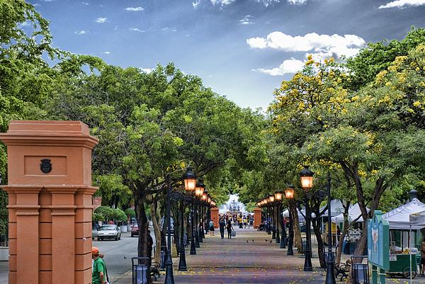 Old San Juan Photograph - El Paseo De La Princesa Old San Juan Puerto Rico by Frank Feliciano