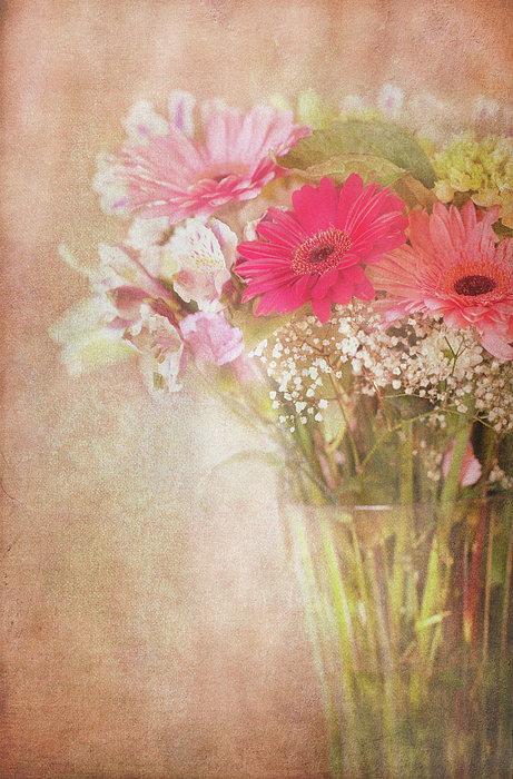 Florals Photograph - Endearing by Beve Brown-Clark Photography