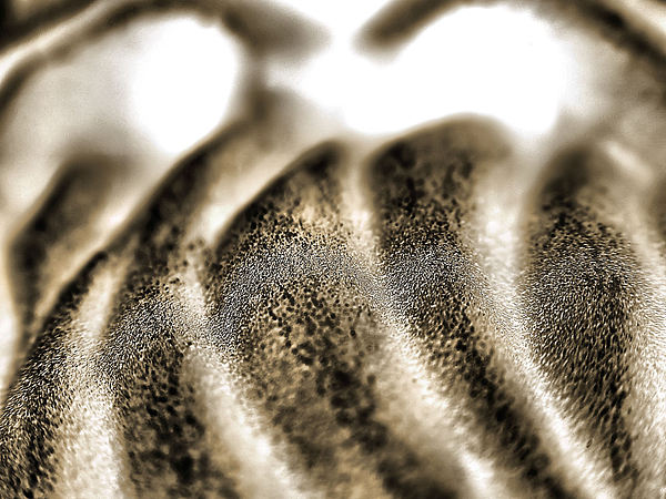 Abstract Photograph - Engine by William Seguin