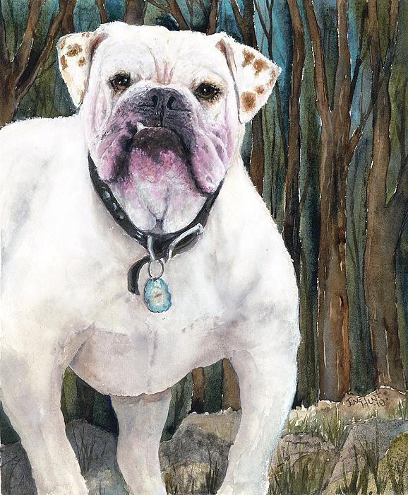 Pet Painting - English Bulldog by June Hunt