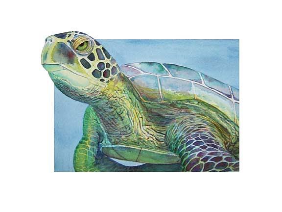 Et Turtle Painting by Carmen Durden