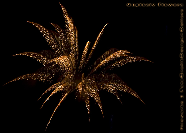 Fireworks Photograph - explosive flowers 2 - Card -  by Heinz - Juergen Oellers