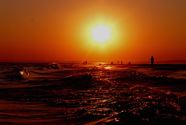 Beach Photograph - Extreme Blazing Sun by Kendall Eutemey