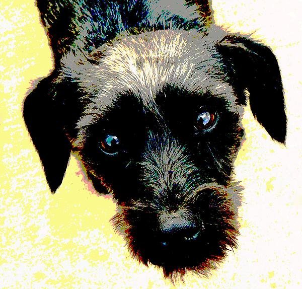 Dog Mixed Media - Eye Contact by Dorrie Pelzer