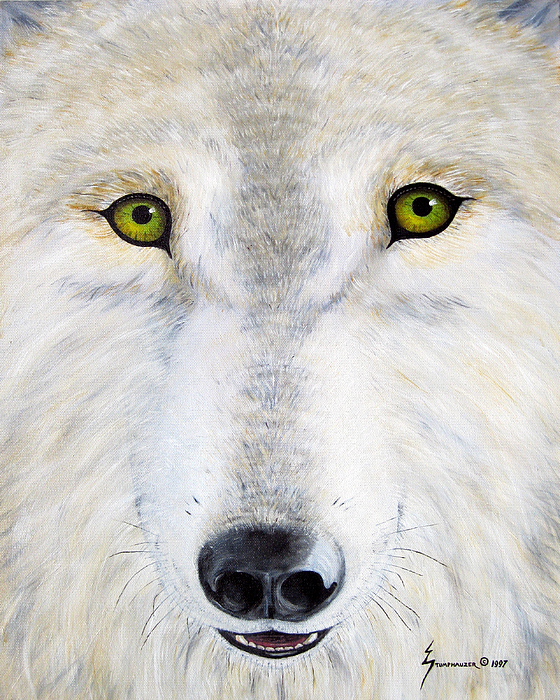 Wolf Painting - Eyes Of The Wolf by Jerome Stumphauzer