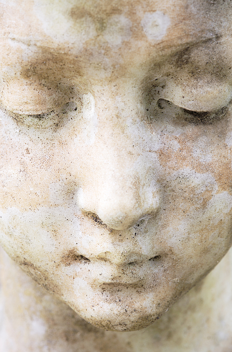 Face Photograph - Face Of Stone by Neil Overy