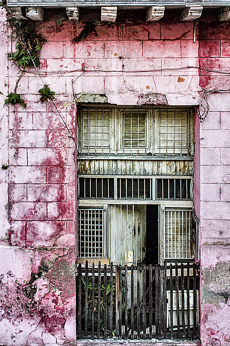 Age Photograph - Faded Rouge by Dawn Currie