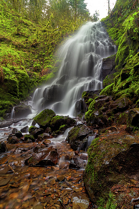 Fairy Falls Photograph - Fairy Falls In Columbia Gorge by David Gn