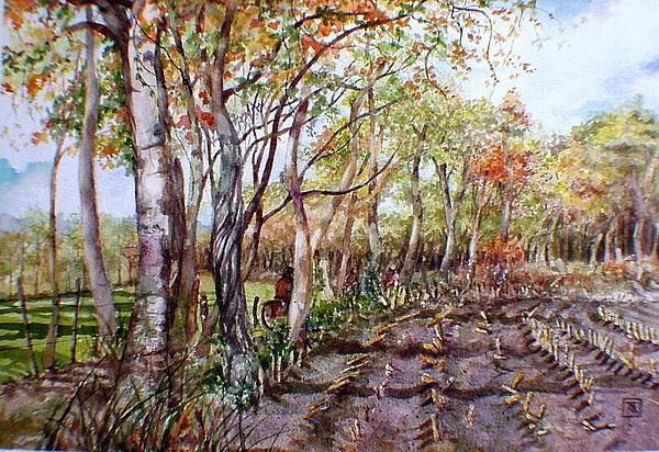 Aquarelle Painting - Fall Corn Harvest by TBH Fine Art