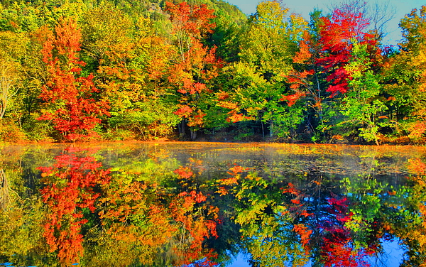 Adirondack Photograph - Fall Reflected  by Emily Stauring