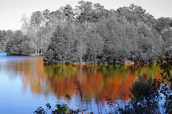 Fall Photograph - Fall Reflection by Don Prioleau