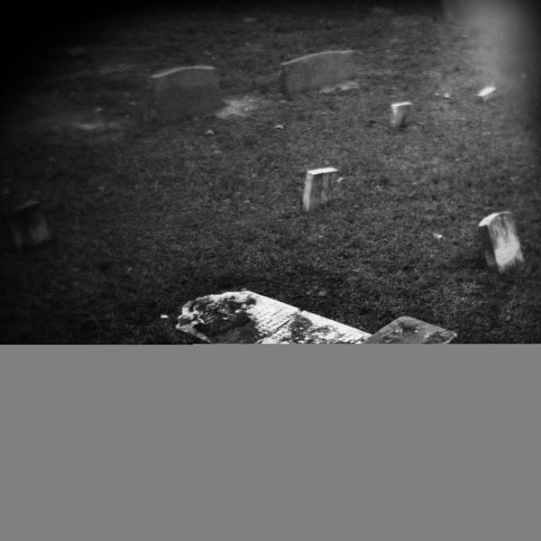 Black And White Photograph - Fallen by Paul Anderson