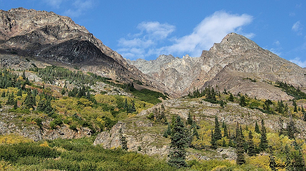 Mountains Photograph - Famous White Pass Summit by Dennis Stein