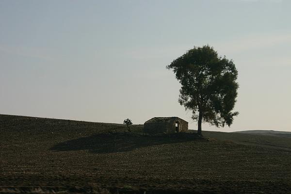 Landscape Photograph - Farm House Alone. by Dennis Curry