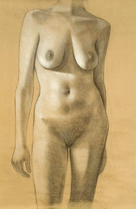 Figurative Drawing - Female Nude by Kim Logan