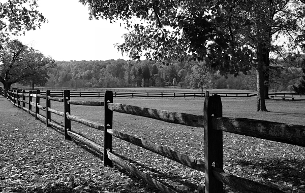 Fence Photograph - Fence Perspective by Kristin Elmquist