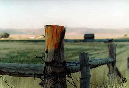 Fence Post I Photograph by John Durham