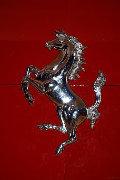 Stallions Photograph - Ferrari Stallion by Rob Hans