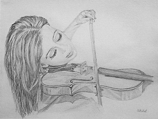 Sketch Drawing - Fiddler by Sheryl Gallant
