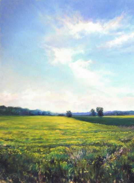 Field Of Yellow Painting by Cathy Boyd