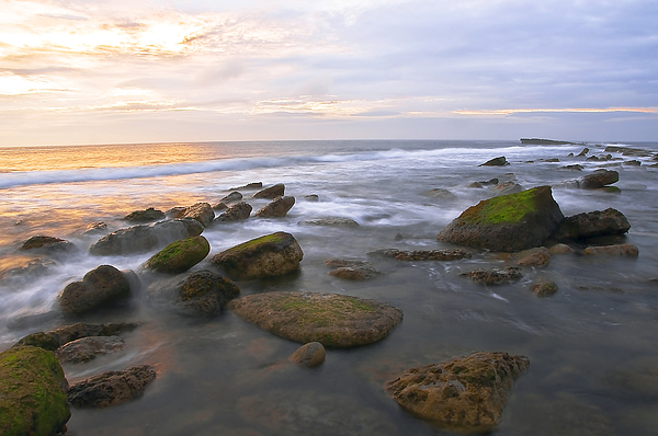 Aqua Photograph - Filey Brig by Svetlana Sewell
