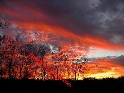 Sky Photograph - Fire Sky 666 by Cindy Wozniak
