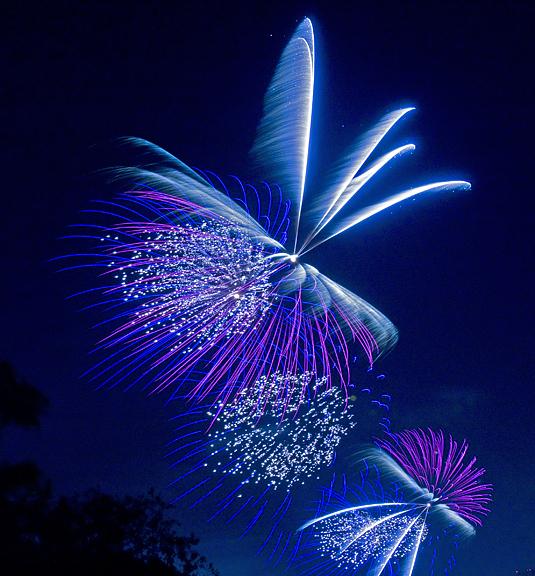 Houston Photograph - Firework Blue by Kelley Swinney