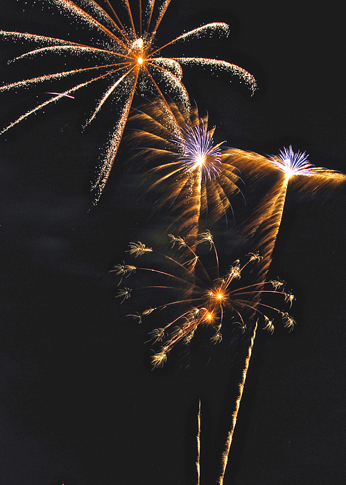 Fireworks Photograph - Fireworks 3 by Michael Peychich
