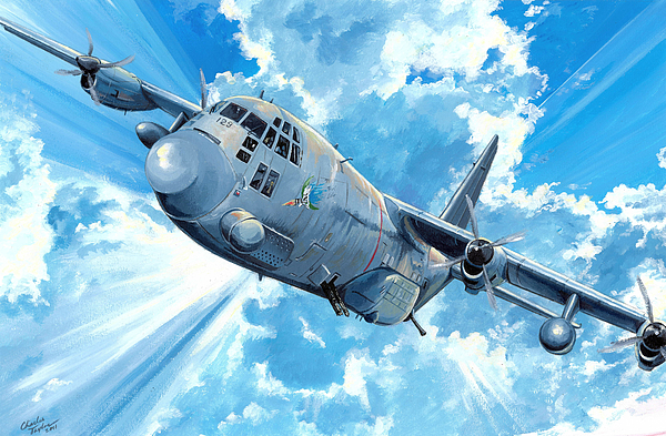 Air Force Painting - First Lady by Charles Taylor