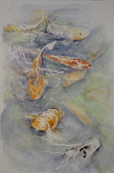 Fish Painting - Fish Pond by Lizzy Forrester
